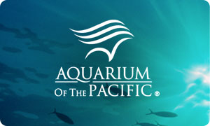 aquarium-of-the-pacific